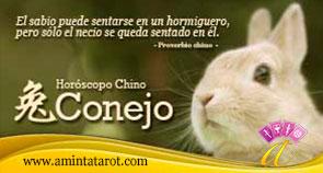 Conejo del Horóscopo Chino 02 - Animales del Zodiaco Chino