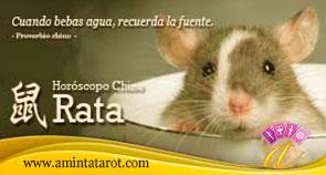 Rata del Horoscopo Chino 02 - Animales del Zodiaco Chino
