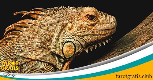 el lagarto en el horóscopo maya - tarot gratis club