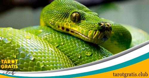 la serpiente en el horoscopo maya - tarot gratis club