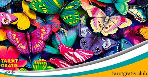 significado de soñar con mariposas - tarot gratis club