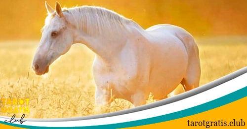 soñar con caballos - interpretación de los sueños