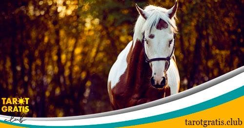 significado de soñar con caballos - tarot gratis club